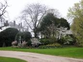 Akadeemia aed