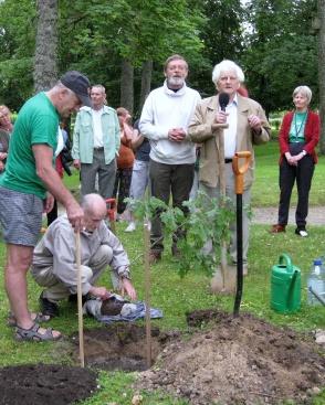 50 aastat ELKS liige olnud Enu Mäela otsis sobiva tamme ja näitab noortele kolleegidele, kuidas õige istutamine käib