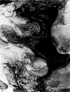 Steingiteooria, 1994