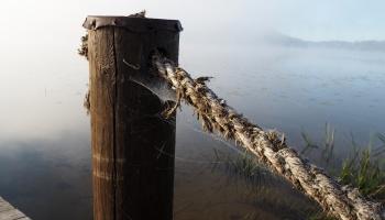 Viljandi järv, 2019-2